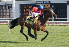 Ryan Moore and Dank cruise to victory in Beverly D. Stakes