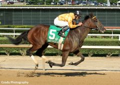 Departing is one of a pair of Al Stall trainees who will contest the Firecracker Handicap at Churchill Downs