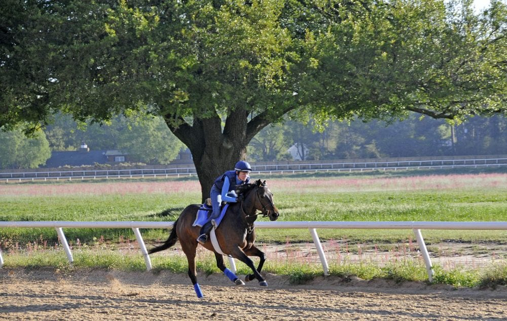 Suzy galloping a then-2-year-old Lucy in Aiken, South Carolina