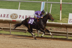Mr. Meso shown racing at Delaware Park