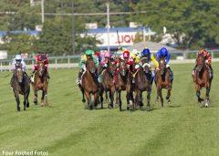 Arlington Park racing