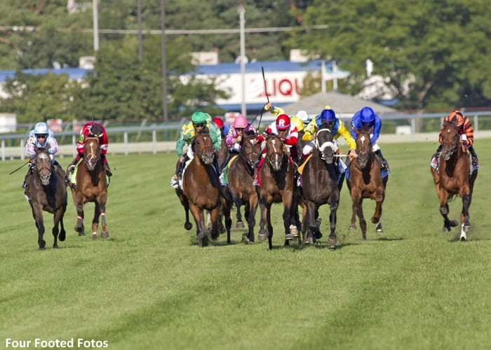 REAL_SOLUTION and The Apache in Arlington Million stretch