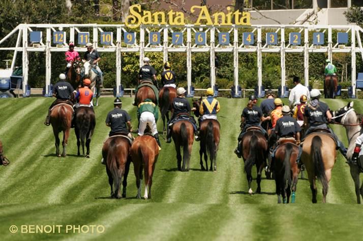 Santa Anita Autumn Handicapping Challenge To Offer 100k