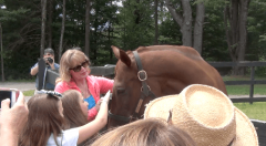 Funny Cide enjoys meeting his fans at Saratoga