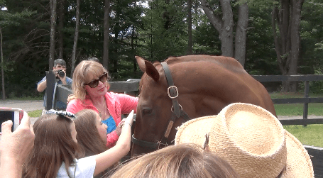 Funny Cide enjoys meeting his fans at Saratoga in 2013