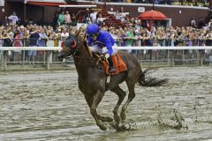 Strapping Groom wins the 2013 Forego