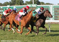 Valiant Girl (inside) sets a course record with Omnibus win