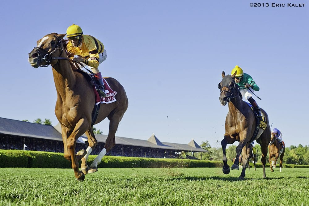 Wise Dan rolls in the Fourstardave