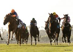 The Fugue (far right) gets up for third in the 2012 BC Filly & Mare Turf