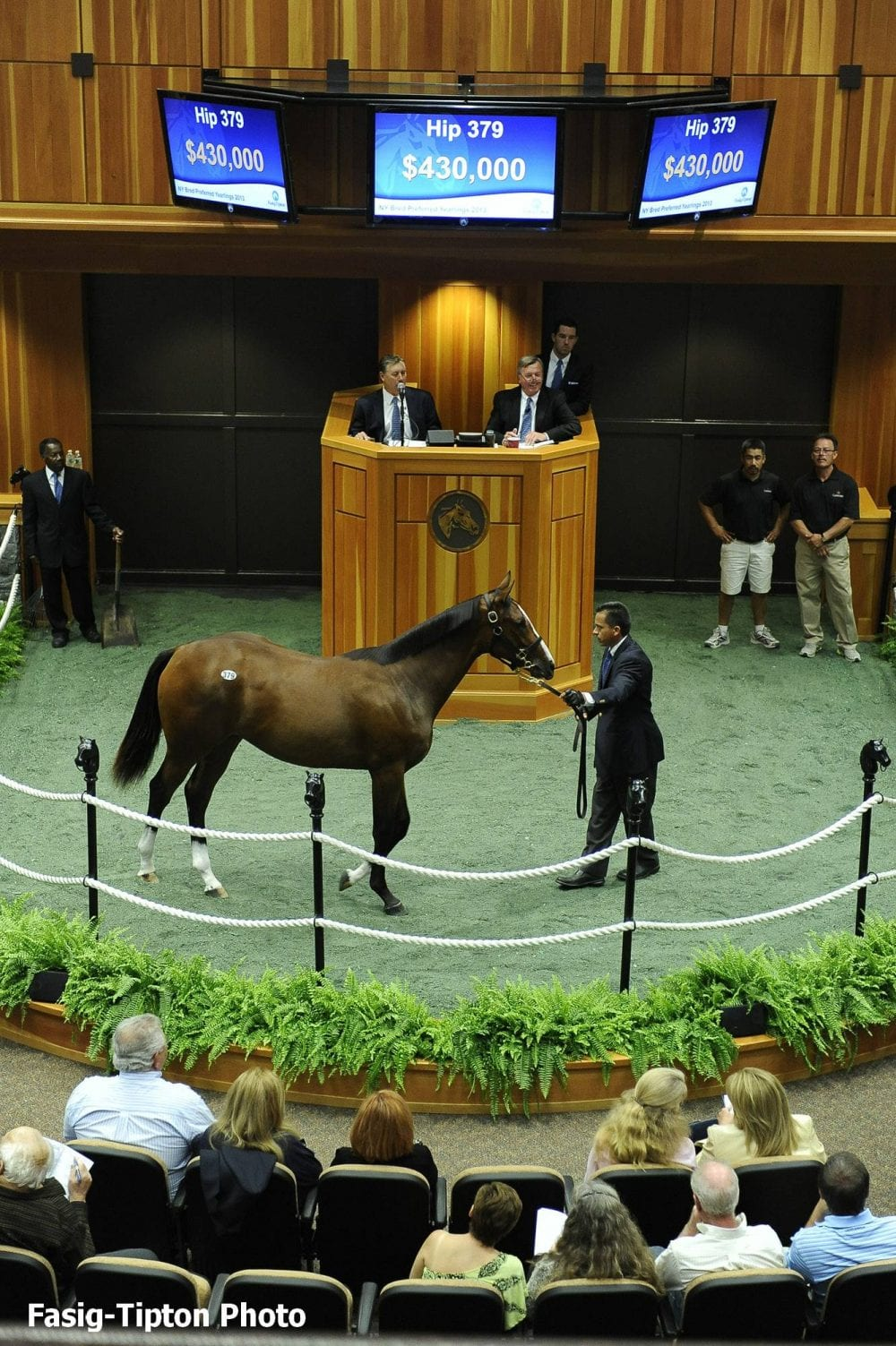 Hip 379, filly by Tapit; sale-topper at 2013 F-T NY-bred sale