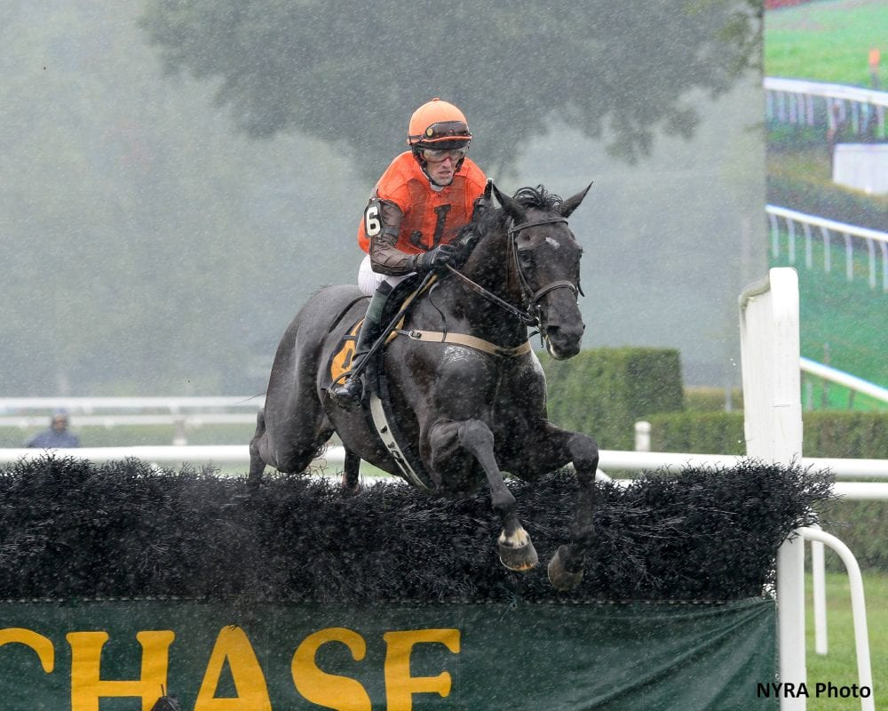 Mr. Hot Stuff, seen winning the G1 A.P. Smithwick Memorial 'Chase
