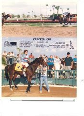 Crackers in the winner's circle at Turf Paradise