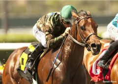Gypsy Robin flies home to win the CERF Stakes at Del Mar