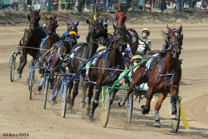 Handicapper to play for 20 000 donation to standardbred for Show pool horse racing