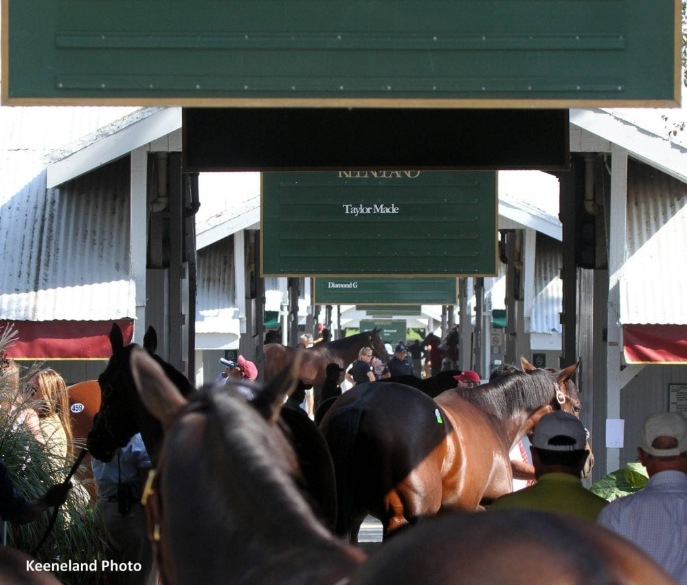 Keeneland's September Yearling Sale