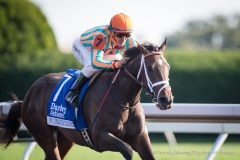 Conquest Stables' My Conquestadory will contest the Grade 1 Belmont Oaks on Saturday afternoon.