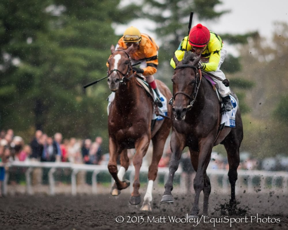 Silver Max defeats Wise Dan in the Shadwell Turf Mile
