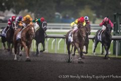Wise Dan unexpectedly lost the Shadwell Turf Mile to Silver Max on Saturday