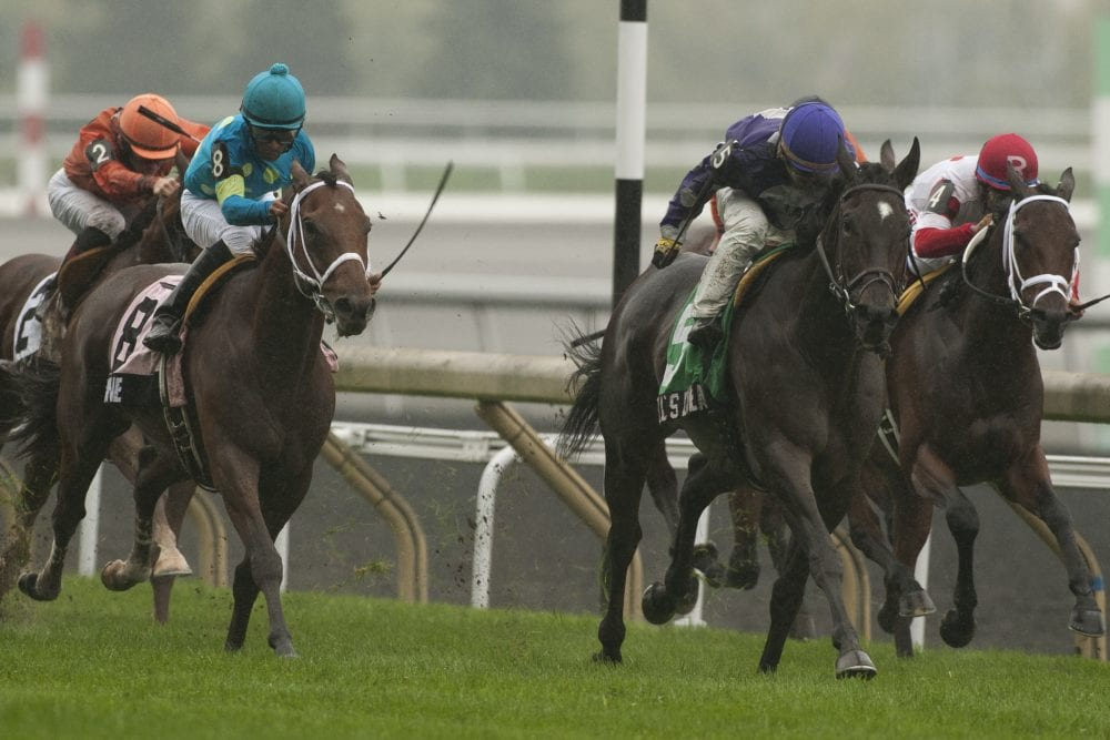 Jockey Club Of Canada Announces 2014 Graded Stakes