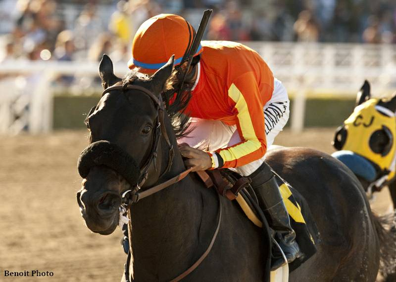 Teddy's Promise wins the L.A. Woman Stakes