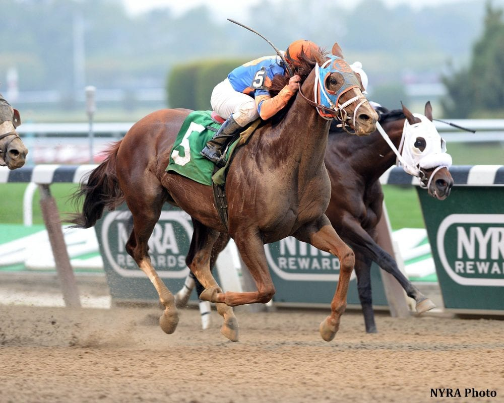 Caixa Eletronica posts his 23rd career victory in the Duck Dance Stakes