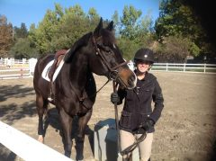 CANTER trainee Green Cat with rider Casey McDonald