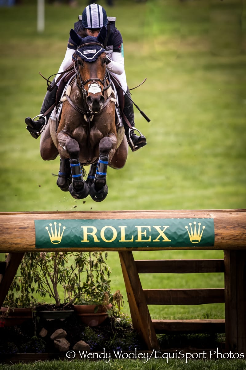 Thoroughbreds Competing at the 2017 Rolex Kentucky Three-Day Event ...