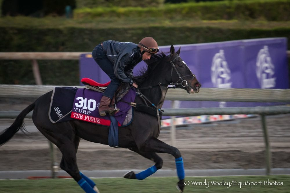 Breeders Cup News Amp Notes Friday Nov 1 Horse Racing