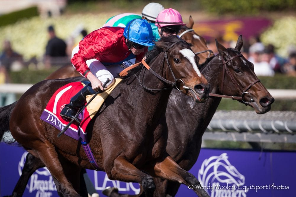 Dank Proves Best In Filly Amp Mare Turf Horse Racing News