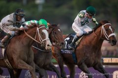 Mucho Macho Man (right) held off Will Take Charge (left) and Declaration of War (center) to win the 2013 BC Classic