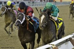 Honor Code (rail) fights back to take the Remsen over Cairo Prince