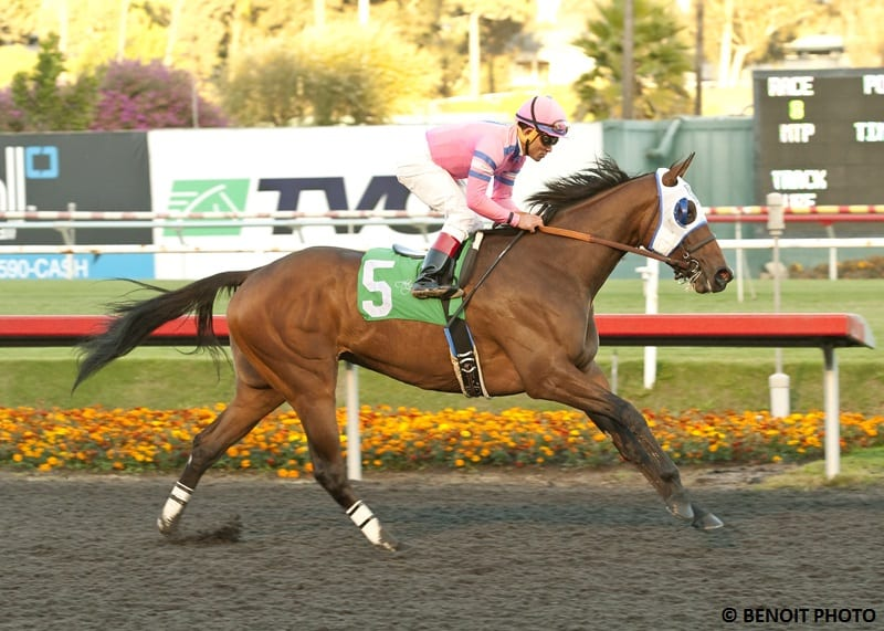 Broken Sword and jockey Joel Rosario win the Grade 2 Bayakoa Stakes at Hollywood Park