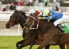 Customer Base (outside) edges Stormy Lucy to win the Frankel