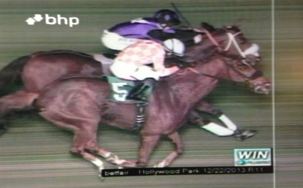 That's a Wrap! - Horse Racing News | Paulick Report