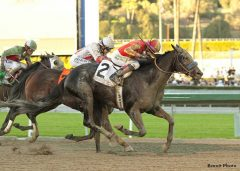Shakin It Up returns to the races with a victory in the G1 Malibu Stakes