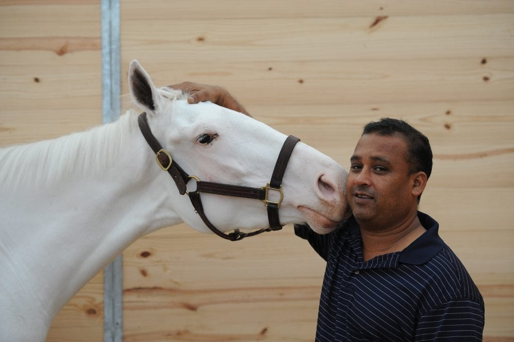 White Thoroughbred Filly Turning Heads At Gulfstream Park