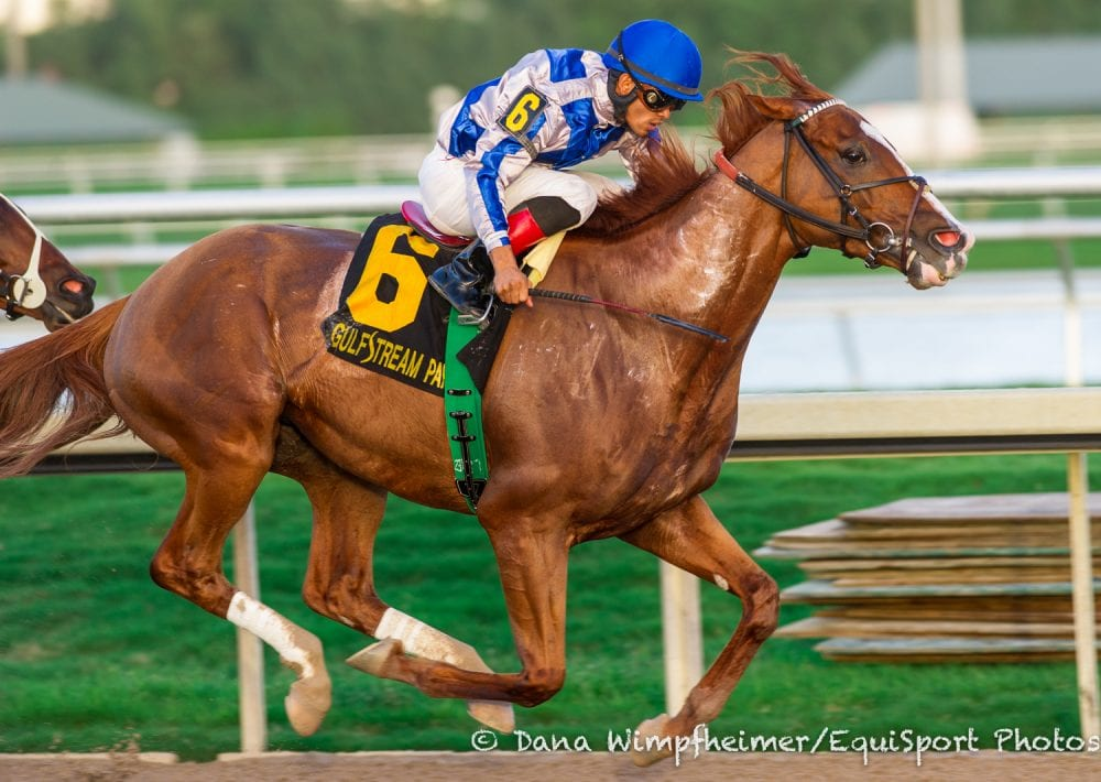 Lea takes the Hal's Hope in debut for Bill Mott