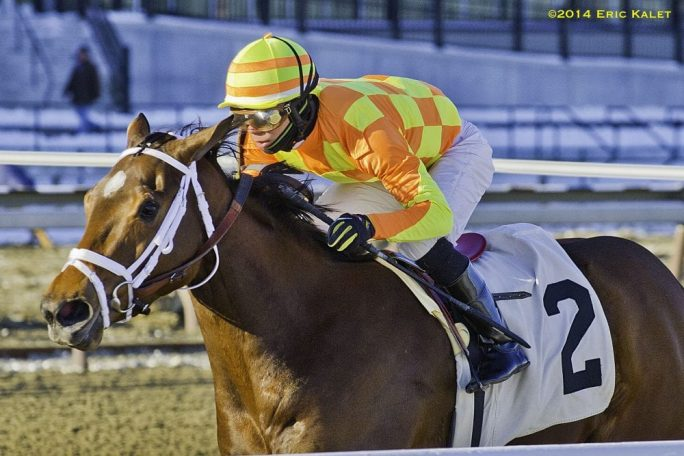 Route du Kentucky Derby/Kentucky Oaks 2014 FierceBoots_2014Busanda-684x456
