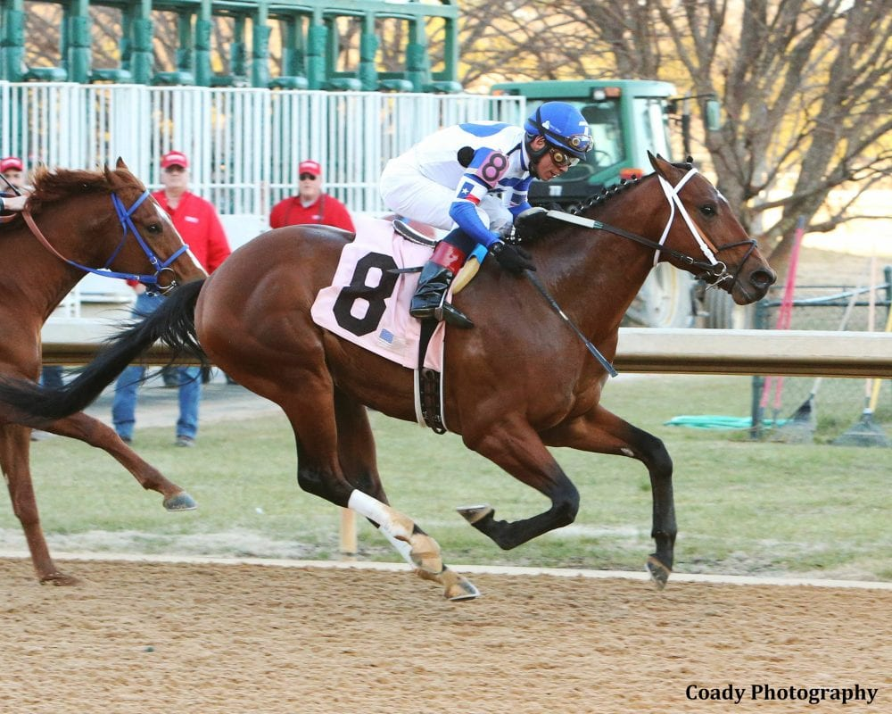 Tanzanite Cat Enters Derby Picture With Sharp Smarty Jones