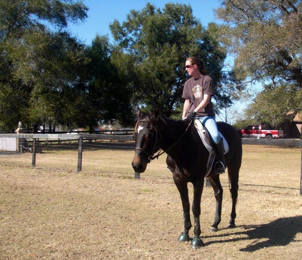 Cosequin Presents Ottb Showcase Mr Black Jack Horse