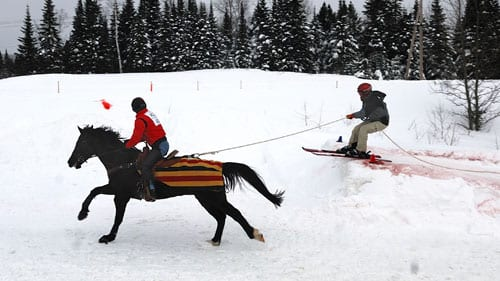 Skijoring The Equine Sport That Almost Made The Winter