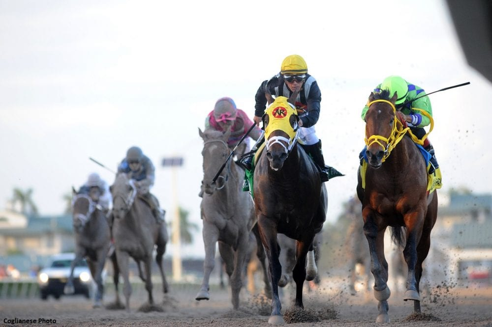 Watchmaker Neither Foy Risen Star Offer Much Clarity For