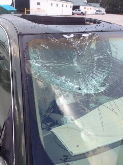 Damage To Terri Page S Car From A Loose Horse At Gulfstream