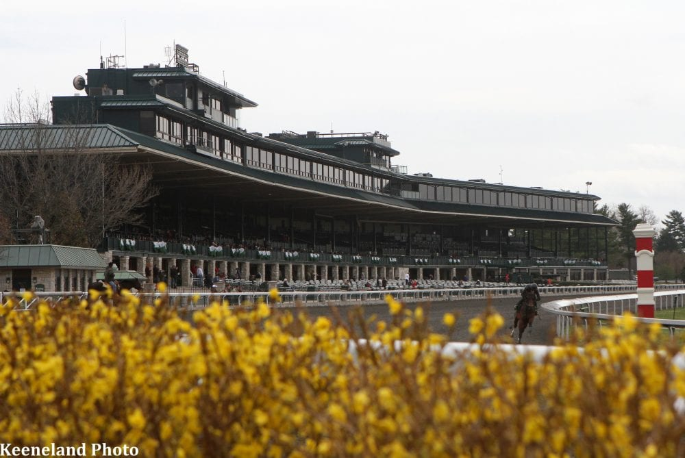 2014 Keeneland April Two-Year Olds in Training Sale Scenics