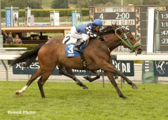 Stormy Lucy, shown winning the G3 Santa Barbara in 2014.