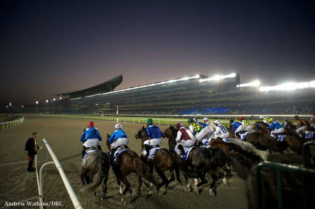 Meydan Racecourse To Replace Tapeta Surface With