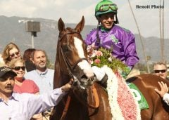Raul Rodriguez guides California Chrome after his win in the Santa Anita Derby