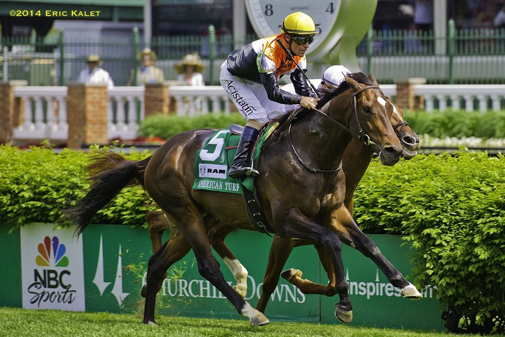 G2 Winner Global View To Stand In South Africa Horse