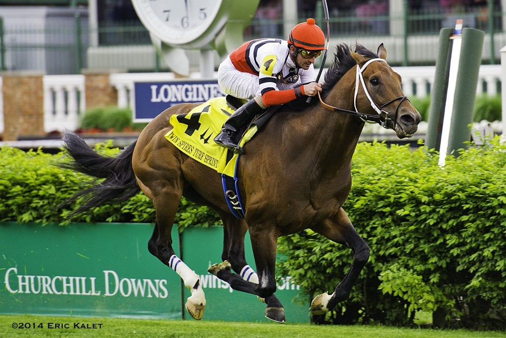 Marchman Charges To Victory In Churchill Downs Turf Sprint