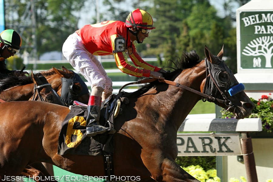 Fiftyshadesofhay Closes Well To Win Ruffian Horse Racing